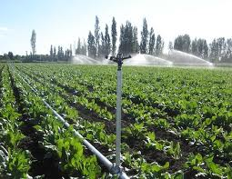 Sistemas de riego por aspersi n microaspersi n y goteo for Sistema de riego por aspersion para jardin
